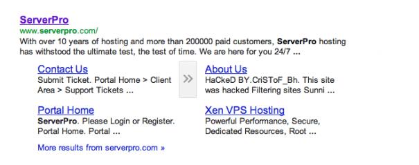 ServerPro SERP's