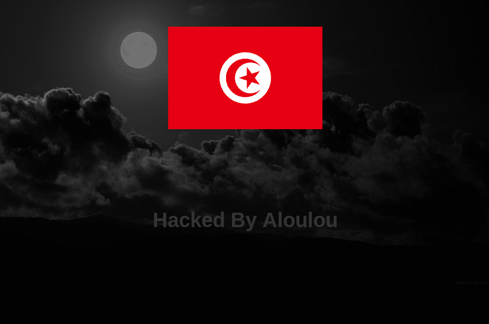 Defaced-Hacked-Website-Aloulou
