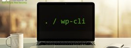 WP-CLI-Guide--Secure-WordPress-Updates-and-Backups