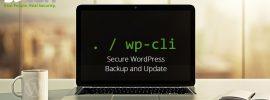wpcli-backupdate