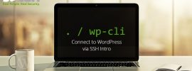 wpcli-connect