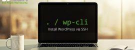 wpcli-install