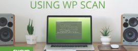 Usingwpscan_blog