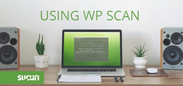 Using WP Scan