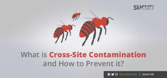 What is cross site contamination and how to prevent it.