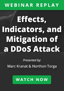 Mitigation of a DDoS Attack