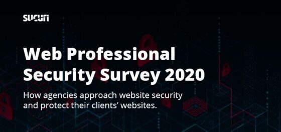 Web Professional Security Survey 2020