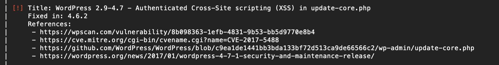 WPScan Result - Cross Site Scripting